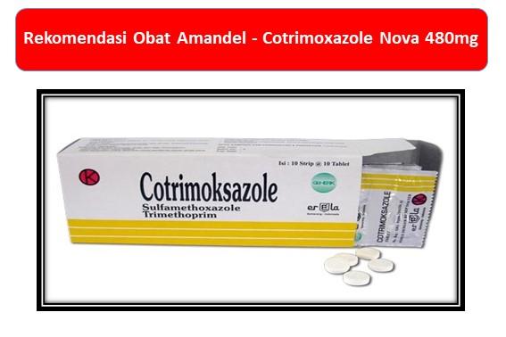 Rekomendasi Obat Amandel Cotrimoxazole Nova 480mg