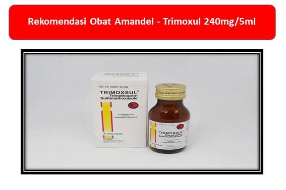 Rekomendasi Obat Amandel